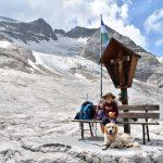 bambino e cane sulla marmolada