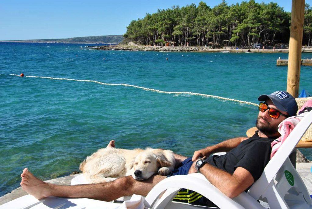 cane con padrone in una dog beach